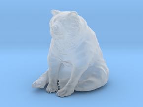 Bear in Smooth Fine Detail Plastic