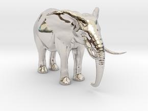 African Alpha Elephant in Platinum