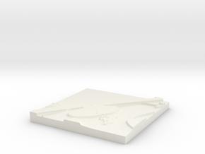 Image in White Natural Versatile Plastic