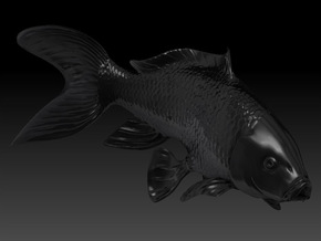 Yin Yang Koi: Black Koi in Black Strong & Flexible