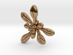 Arabidopsis Lapel Pin -Science Jewelry in Polished Brass