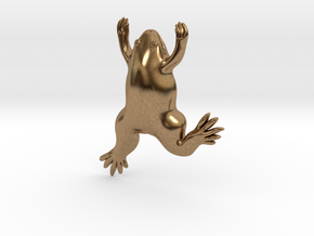 Xenopus Frog Pendant - Science Jewelry in Natural Brass