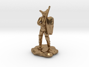 Wilden Sword And Shield in Natural Brass