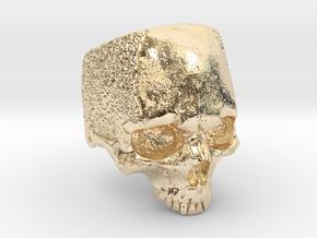 LabSkull in 14K Yellow Gold