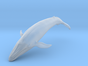 Blue Whale middle size (color) in Smooth Fine Detail Plastic