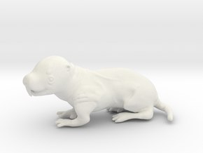 Naked mole rat in White Natural Versatile Plastic