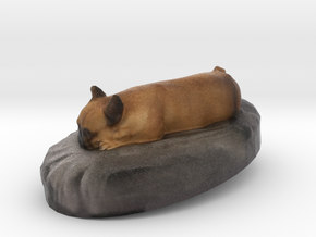 Louis The Frenchie in Full Color Sandstone