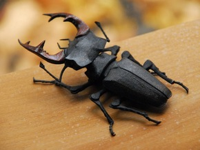 Articulated Stag Beetle (Lucanus cervus) in White Natural Versatile Plastic
