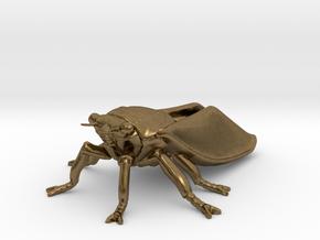Cicada in Natural Bronze