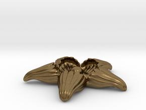StarPearl in Natural Bronze