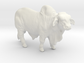 1/64 Brahma Bull in White Strong & Flexible
