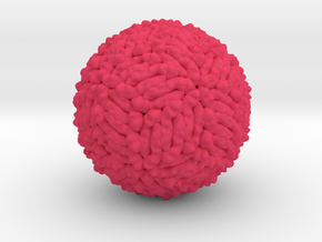 Zika Virus Shell 5IRE in Pink Processed Versatile Plastic: Extra Small