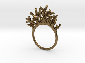 Ring Arboreus in Polished Bronze: 4 / 46.5