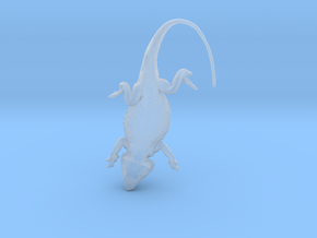 Bearded Dragon for silver - 35mm in Smooth Fine Detail Plastic