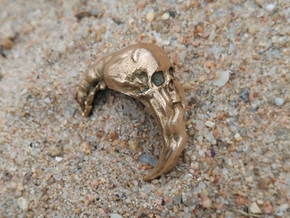 Death in Polished Bronze