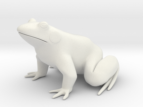Frog, for acrylic plastic in White Natural Versatile Plastic