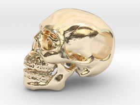 Hope Skull in 14K Yellow Gold
