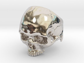 Mammoth Skull Ring No Mandible US size 10 with add in Platinum