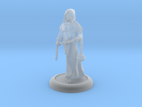 Cleric in Smooth Fine Detail Plastic