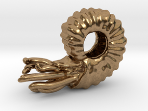 Ammonite Bead in Natural Brass