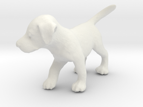 1/24 Puppy in White Natural Versatile Plastic