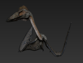 Quetzalcoatlus walking (Medium / Large size) in White Natural Versatile Plastic: Medium
