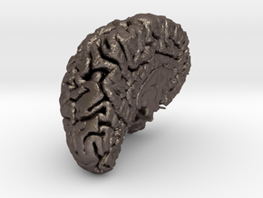 The left hemisphere of the brain - full scale in Polished Bronzed Silver Steel