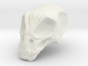 Monster Skull in White Natural Versatile Plastic