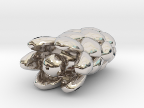 Cobra-Segment in Platinum