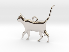 Schrödinger's Cat Pendant in Rhodium Plated Brass