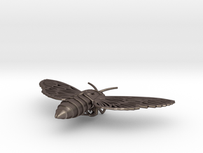 Death's-head Hawkmoth in Polished Bronzed Silver Steel