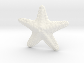 Starfish paperweight in White Strong & Flexible Polished