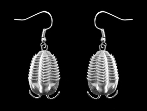 Trilobites Earrings in Natural Silver
