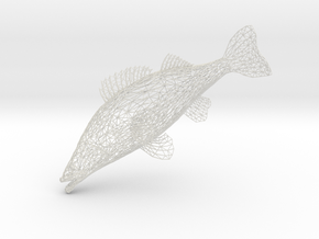 Fish in White Natural Versatile Plastic