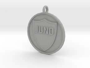 Juno's Pet Tag in Aluminum