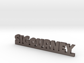 SIGOURNEY Lucky in Polished Bronzed Silver Steel