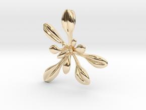 Large Arabidopsis Rosette pendant in 14k Gold Plated Brass