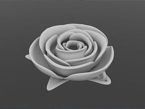 White Rose in White Strong & Flexible