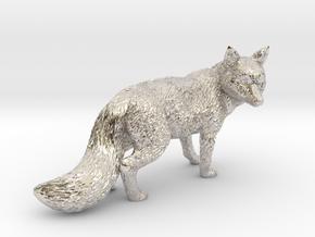 Fox statue in Rhodium Plated Brass
