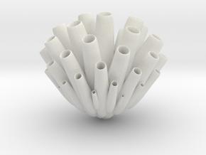 "Sea Sponge (Porifera) ""pore bearer"" in White Natural Versatile Plastic: 1:32"
