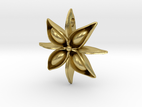 Anise Pendant in Natural Brass