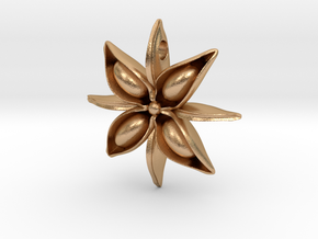 Anise Pendant in Natural Bronze