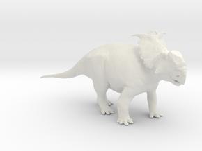 Pachyrhinosaurus canadensis - Alert Male 1/40 in White Natural Versatile Plastic