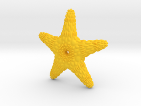 TMStarfish in Yellow Processed Versatile Plastic