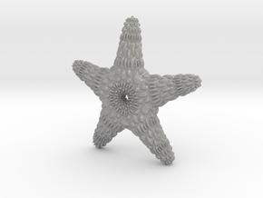 TMStarfish in Aluminum
