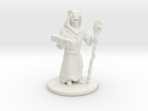 Lich Sorcerer Mini 28mm in White Natural Versatile Plastic