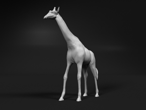 Giraffe 1:12 Standing Male in White Natural Versatile Plastic
