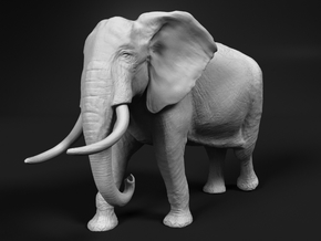 African Bush Elephant 1:12 Walking Male in White Natural Versatile Plastic