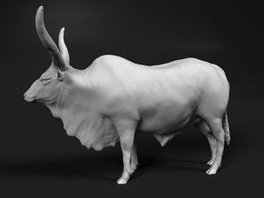 Ankole-Watusi 1:64 Standing Male in Smooth Fine Detail Plastic
