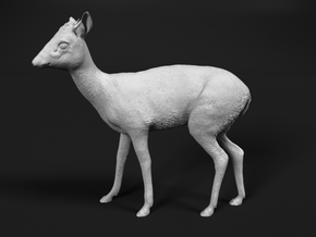 Kirk's Dik-Dik 1:22 Standing Male in Smooth Fine Detail Plastic